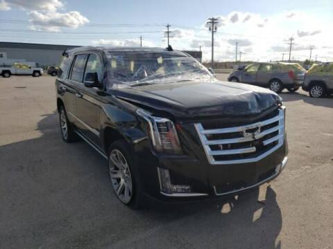 2016 Cadillac Escalade for sale at ELITE MOTOR CARS OF MIAMI in Miami FL