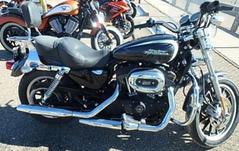 Harley Davidson Colorado >> 2008 Harley Davidson Xl1200r Spt 1200 Roadster For Sale In Colorado Springs Co