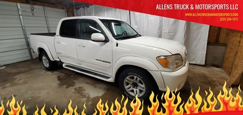 2005 Toyota Tundra Limited for sale at ALLENS TRUCK & MOTORSPORTS LLC in Buckley MI