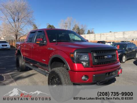 2014 Ford F-150 for sale at Ruby Mountain Motors Twin Falls in Twin Falls ID