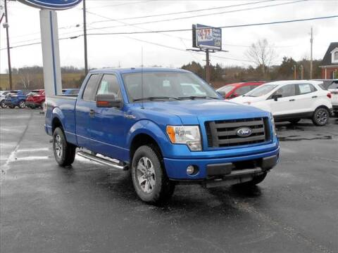 2010 Ford F-150 for sale at I-77 AutoGroup in Ripley WV