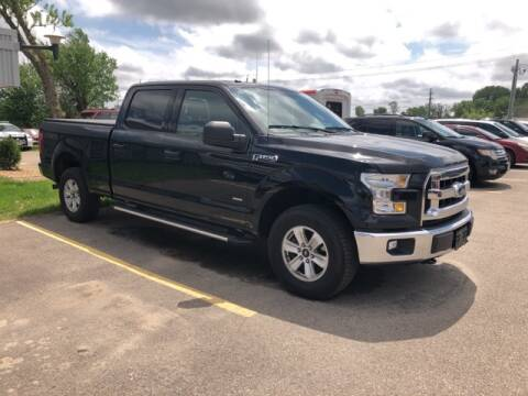 2016 Ford F-150 XLT for sale at Owatonna Motor Company in Owatonna MN