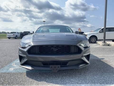 2018 Ford Mustang for sale at King Motors featuring Chris Ridenour in Martinsburg WV