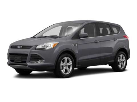 2016 Ford Escape for sale at BORGMAN OF HOLLAND LLC in Holland MI