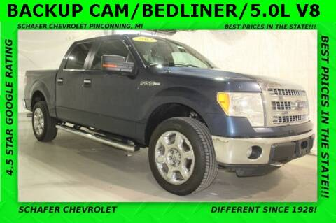 2013 Ford F-150 for sale at Schafer Chevrolet in Pinconning MI