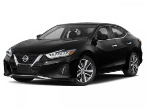 2019 Nissan Maxima for sale at Acadiana Automotive Group - Acadiana Dodge Chrysler Jeep Ram Fiat South in Abbeville LA