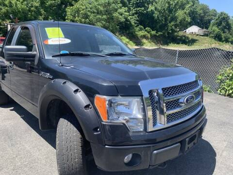 2010 Ford F-150 for sale at Martino Motors in Pittsburgh PA