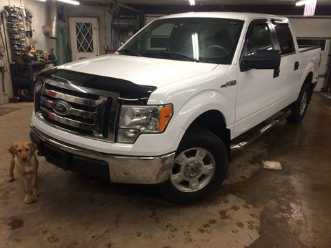 2011 Ford F-150 for sale in Holland, MI
