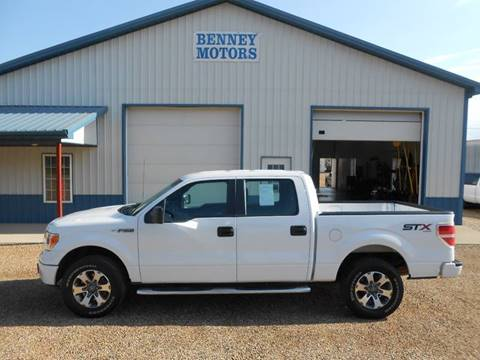 2014 Ford F-150 for sale in Parker, SD