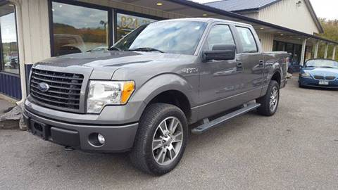 2014 Ford F-150 for sale at DAMIAN'S AUTOMOTIVE in Hamilton NY