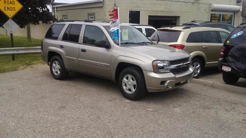 2002 Chevrolet TrailBlazer for sale at Jeffreys Auto Resale, Inc in Roseville MI