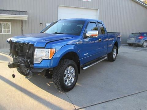 2013 Ford F-150 for sale in Bruce Township, MI