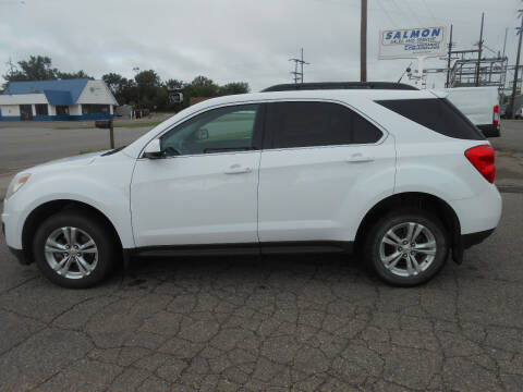 2010 Chevrolet Equinox for sale at Salmon Automotive Inc. in Tracy MN