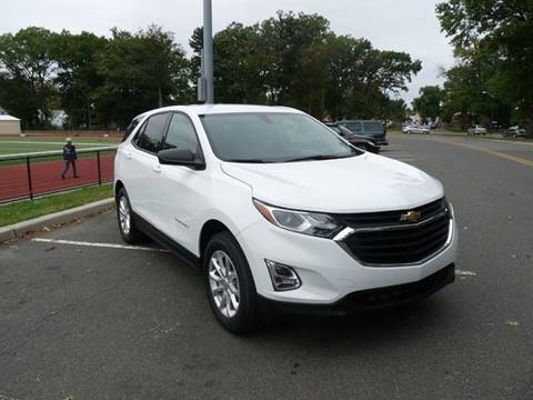 2019 Chevrolet Equinox for sale at TJS Auto Sales Inc in Roselle NJ