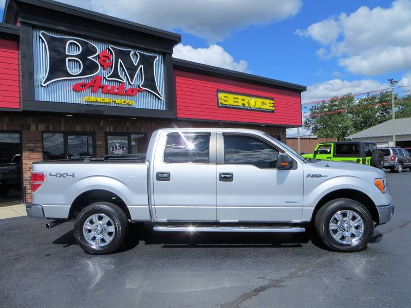 2011 Ford F-150 for sale at B & M Auto Sales Inc. in Oak Forest IL