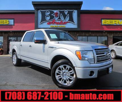2009 Ford F-150 for sale at B & M Auto Sales Inc. in Oak Forest IL