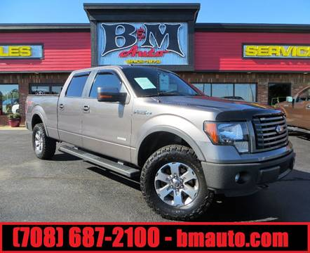 2012 Ford F-150 for sale at B & M Auto Sales Inc. in Oak Forest IL