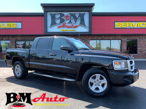 2009 Dodge Dakota for sale at B & M Auto Sales Inc. in Oak Forest IL