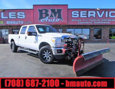 2014 Ford F-250 Super Duty for sale at B & M Auto Sales in Oak Forest IL