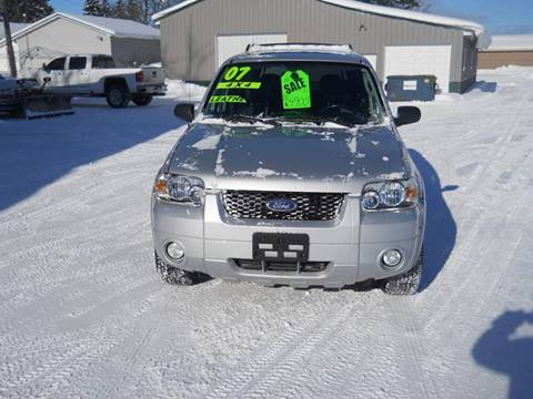 2007 Ford Escape for sale at Shaw Motor Sales in Kalkaska MI