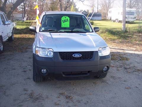 2006 Ford Escape for sale at Shaw Motor Sales in Kalkaska MI
