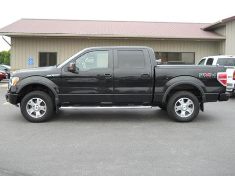 2010 Ford F-150 for sale in Luverne, MN
