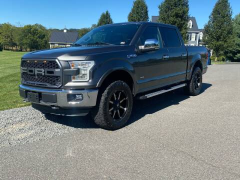 2016 Ford F-150 for sale at Blue Line Motors in Winchester VA