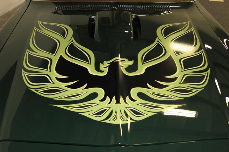 1973 Pontiac Trans Am 13