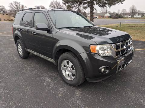 2009 Ford Escape for sale at Tremont Car Connection in Tremont IL