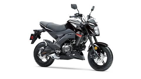2019 Kawasaki Z125PRO