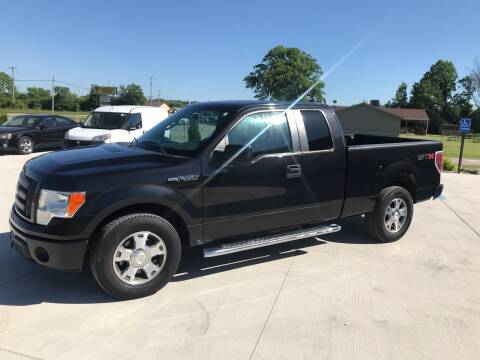 2010 Ford F-150 for sale at The Auto Depot in Mount Morris MI