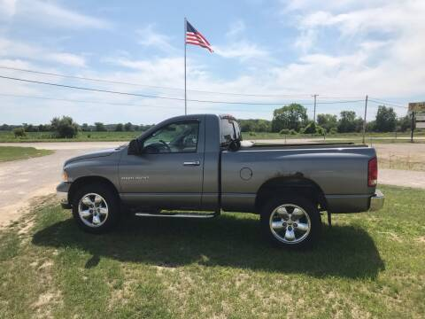 2005 Dodge Ram Pickup 1500 for sale at The Auto Depot in Mount Morris MI