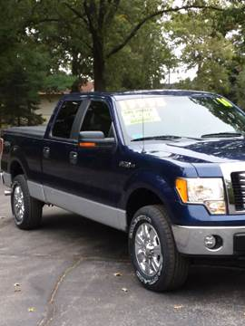 2010 Ford F-150 for sale in Schererville, IN