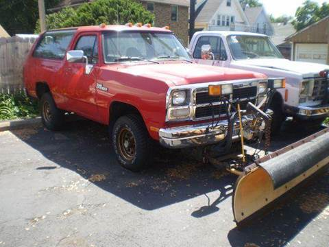 1993 Dodge Ramcharger for sale at DTH FINANCE LLC in Toledo OH
