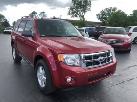 2011 Ford Escape for sale at Newcombs Auto Sales in Auburn Hills MI