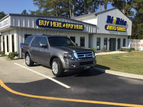 2013 Ford Expedition for sale at Bi Rite Auto Sales in Seaford DE