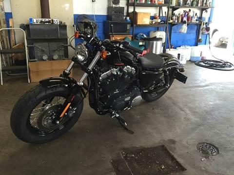 2013 Harley-Davidson Sportster 48