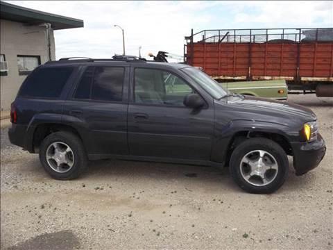 2007 Chevrolet TrailBlazer for sale at Bretz Inc in Dighton KS