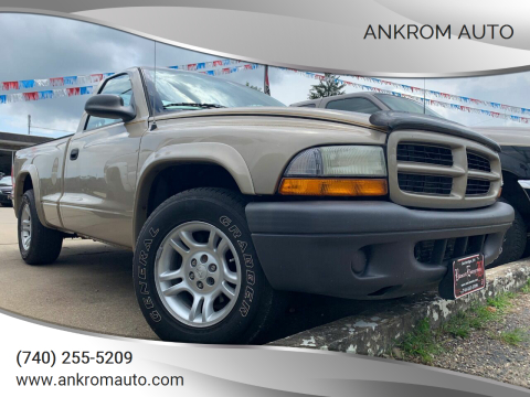 2003 Dodge Dakota for sale at Ankrom Auto in Cambridge OH