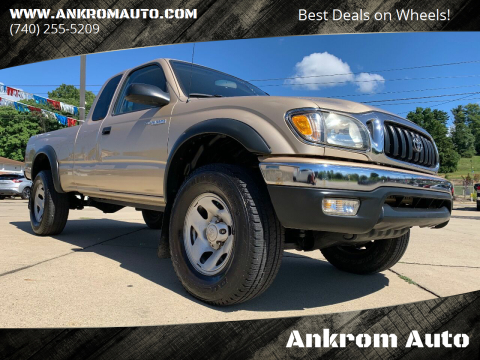 2002 Toyota Tacoma for sale at Ankrom Auto in Cambridge OH