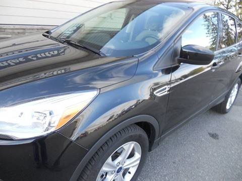 2014 Ford Escape for sale in Staples, MN