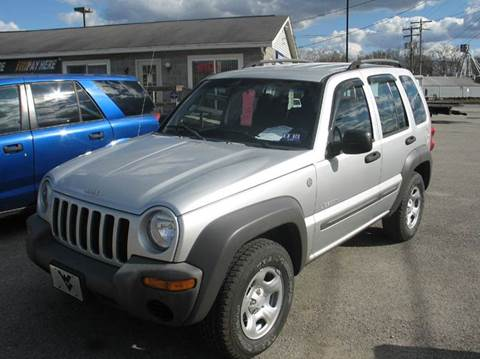 2004 Jeep Liberty for sale at RACEN AUTO SALES LLC in Buckhannon WV