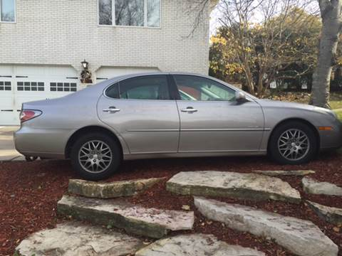 2004 Lexus ES 330 for sale at You Win Auto in Metro MN