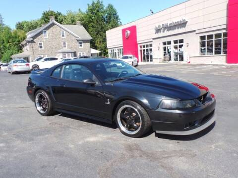1999 Ford Mustang SVT Cobra for sale at Jeff D'Ambrosio Auto Group in Downingtown PA