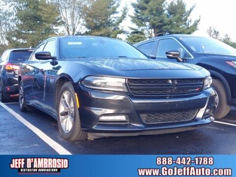 2015 Dodge Charger for sale at Jeff D'Ambrosio Auto Group in Downingtown PA