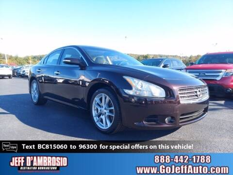 2011 Nissan Maxima for sale at Jeff D'Ambrosio Auto Group in Downingtown PA