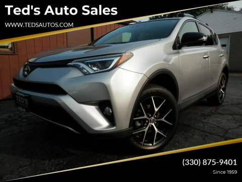2017 Toyota RAV4 for sale at Ted's Auto Sales in Louisville OH