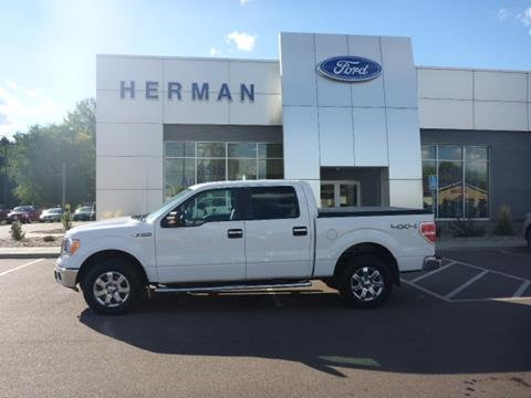 2014 Ford F-150 for sale in Luverne, MN
