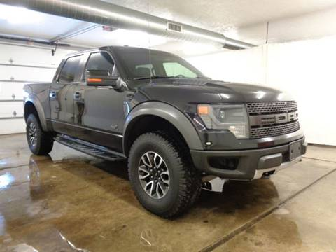 2014 Ford F-150 for sale at Boondox Motorsports in Caledonia MI