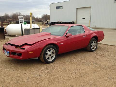 1982 Pontiac Firebird for sale in Tyndall, SD